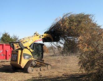 Dozer hauling tree